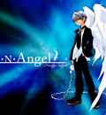 dn angel